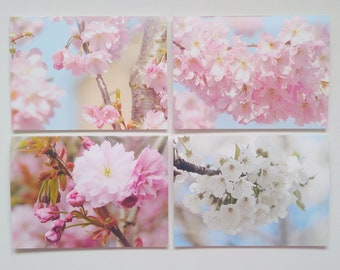 Blossom Greeting Card Multipack