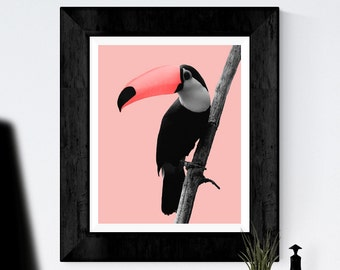 Bird Print, Toucan Bird, Tropical Parrot Wall Art, Printable Art, Colourful print, Pink black, Bird Photography, Tropical bird