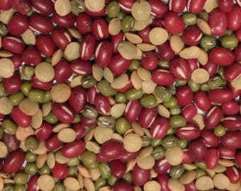 Three Bean Salad Mix for Sprouting