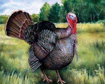 Turkey watercolor