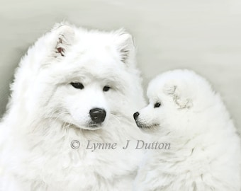 """Limted Edition Print  """" Together as One """"  Special Offer"""