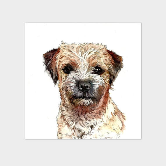Small Art Print Border Terrier Dog Watercolour And Pen Pet Etsy