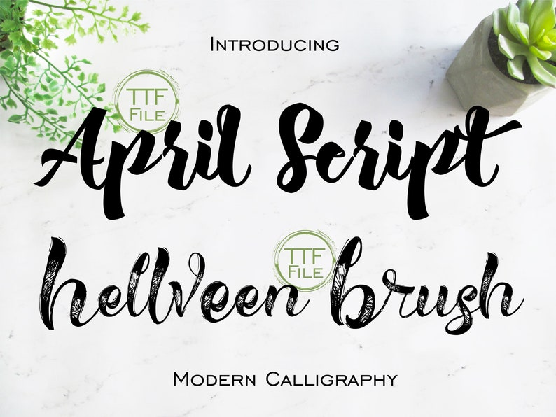 Fonts Set Digital Font Modern Calligraphy Swash Brush Bold Font Software  Download TTF Files Word Silhouette Cricut Photoshop Corel Draw