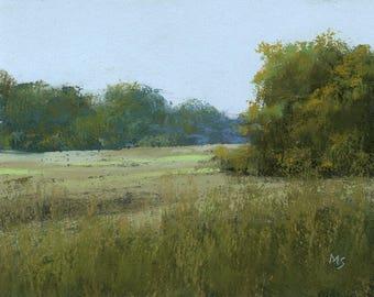 Summer Meadow - original pastel landscape by Michael Scotko