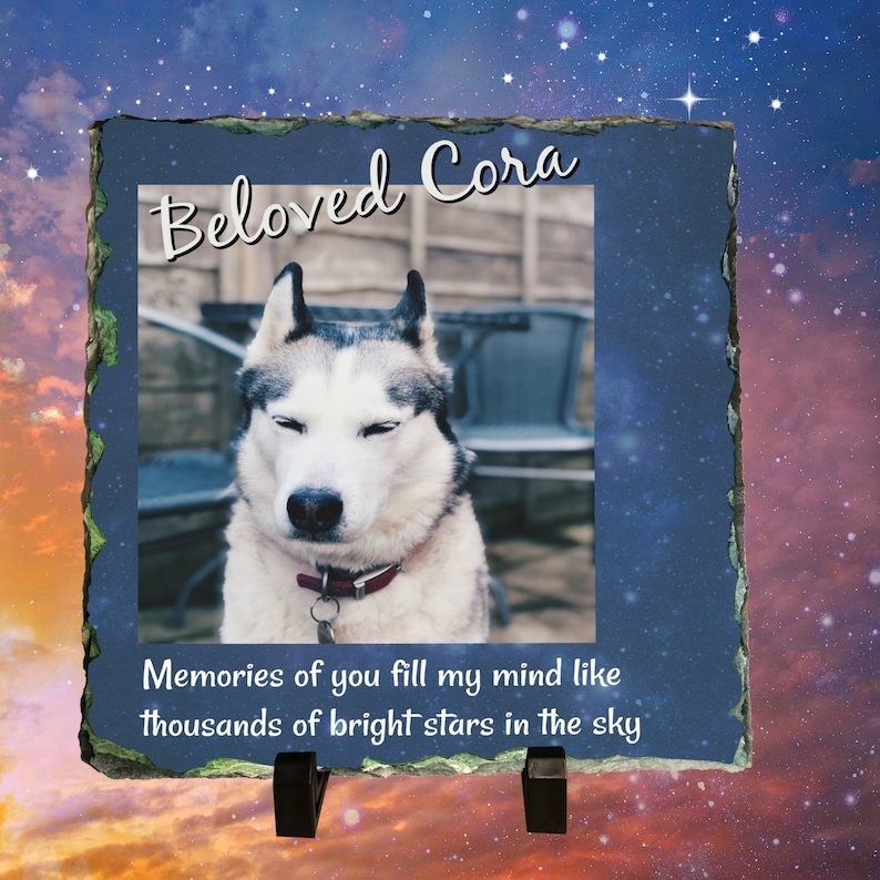In Remembrance of Cherished Four Footed Friend Memorial Dog image 0