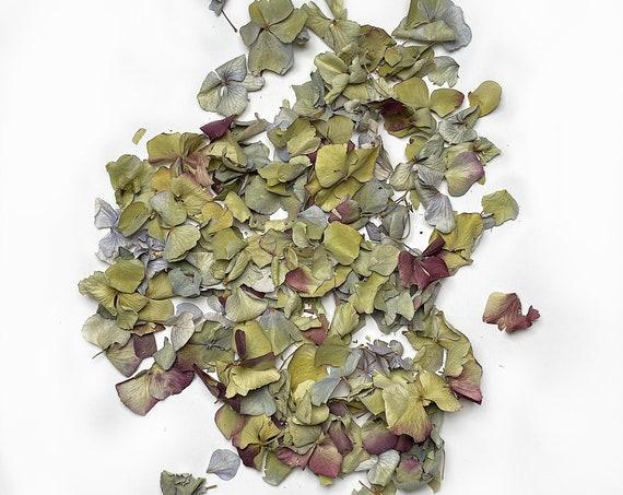 Hydrangea Confetti, Potpourri, Dried Petals, Wedding, Filler, Confetti, Dried Flowers, Decor, Green, Blue, Burgundy, Arts and Craft