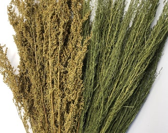 Dried Sweet Annie, Artemisia, Green Flowers, Herb, Filler Flowers, Wedding, Bouquet, Wildflowers, Farmhouse, Country Rustic Decor, Preserved
