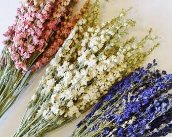 Wedding bundle etsy dried larkspur white cream pink dark blue deep purple dry junglespirit Images