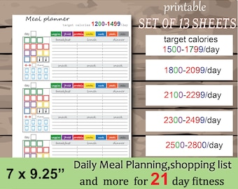 picture regarding Printable 21 Day Fix named 21 working day mend Etsy