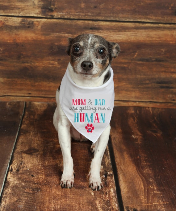 Cute Babys Guard Dog Bandana Baby Announcement Bandana Pregnancy Announcement Photos