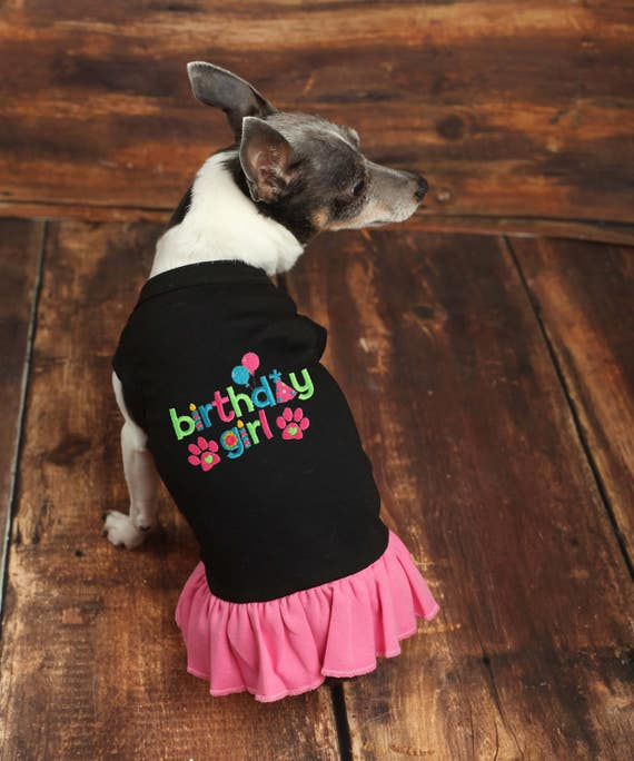 Birthday Girl Dog Dress Shirt Custom
