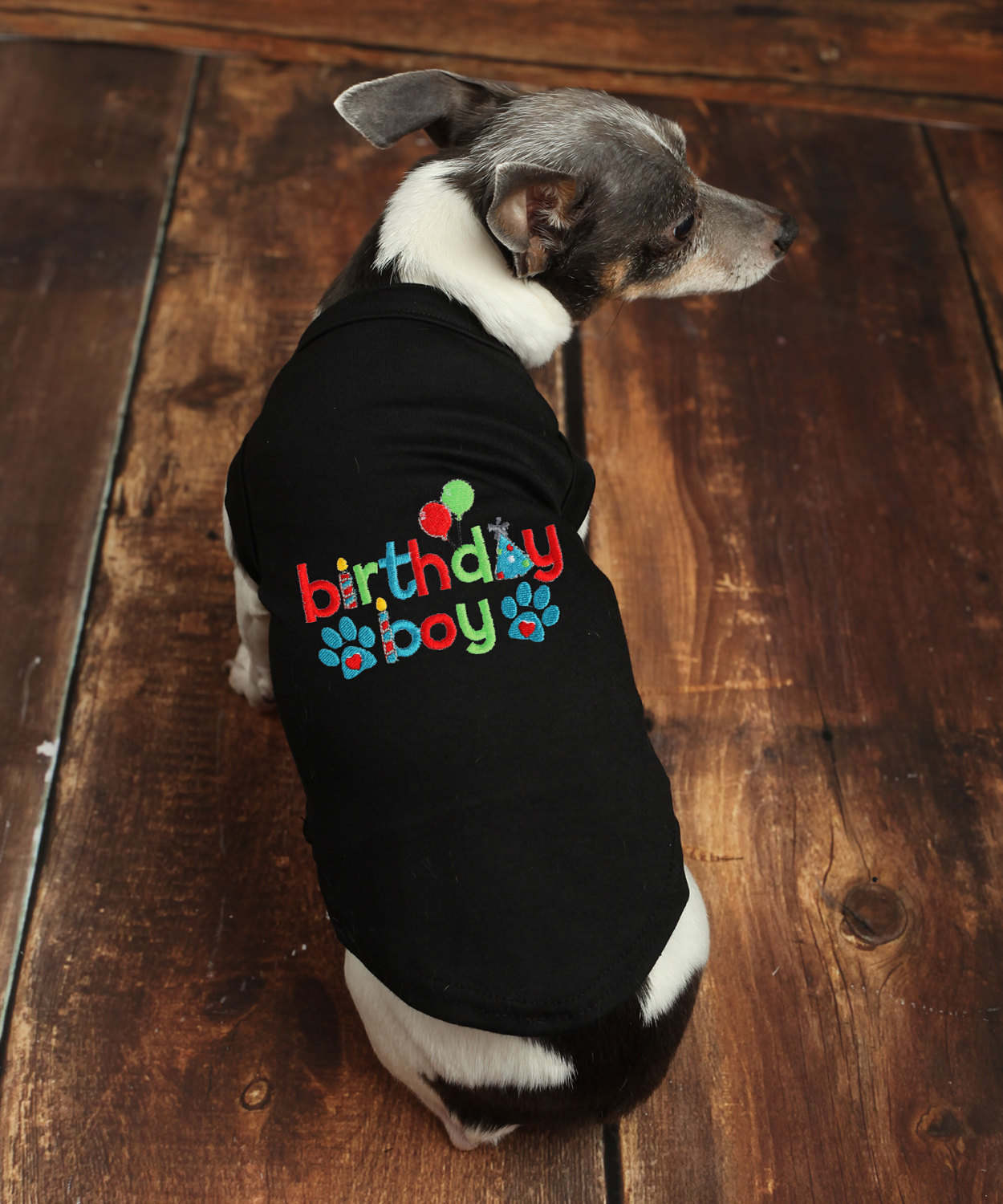 Happy Birthday Shirts For Dogs Alzheimers Network Of Oregon