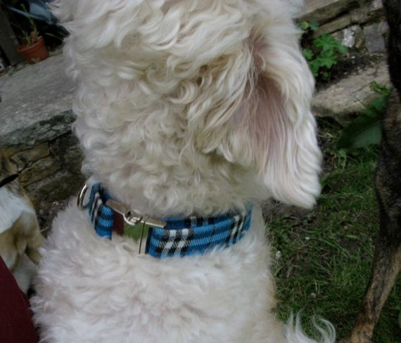 Tartan bleu et noir Style collier chien réglable avec fermoir métallique