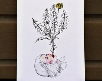 By the roots - drawing illustration print