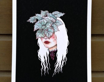 The Begonia - illustration drawing print A4