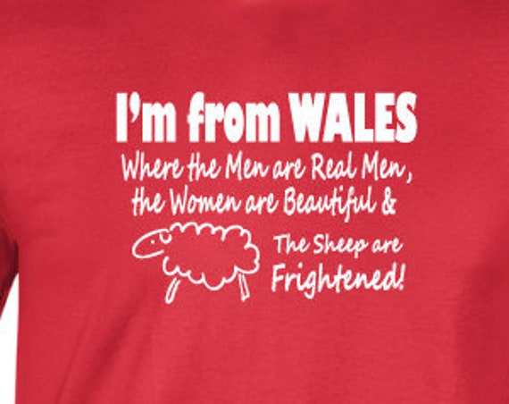 I'm From Wales T-Shirt. Funny Welsh Shirt. Welsh Slogan Tee. I'm Welsh. Welsh Gift. Wales Shirt. Cymru Shirt.