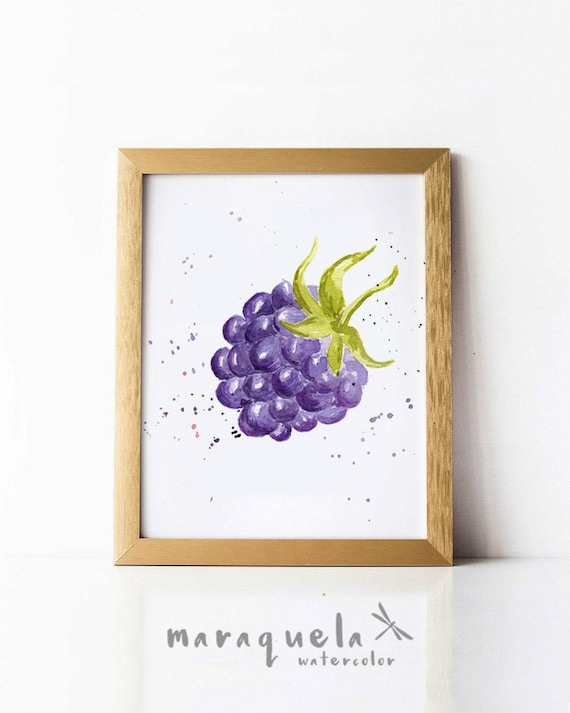 BLACKBERRY illustration watercolor