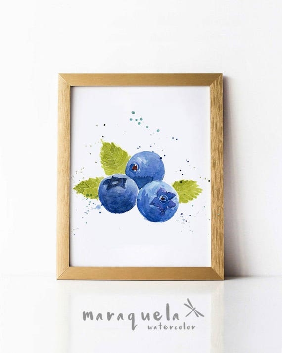 BLUEBERRY illustration watercolor.