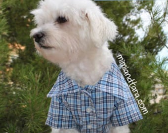 Dog Shirt Pattern size XXL, Dog Clothes, Sewing Pattern, Dog Clothes Pattern