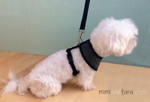 Dog Harness Pattern Bundle All Sizes Vest Harness Dog Vest Etsy