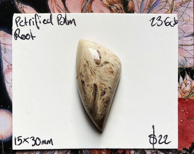 Freeform petrified palm root cabochon