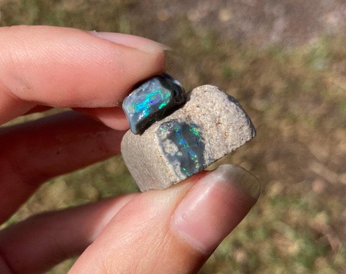 2 pieces of Lightning Ridge Black Opal