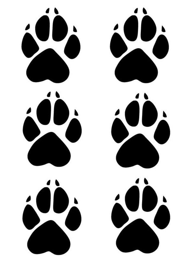6 x Glanz Wolf Pfote Aufkleber süße Pfote Aufkleber Bin   Etsy