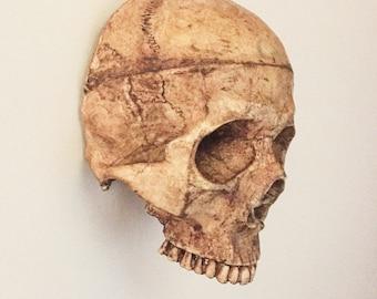 Skull of Sanctum