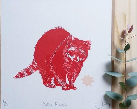 Framed Red Raton