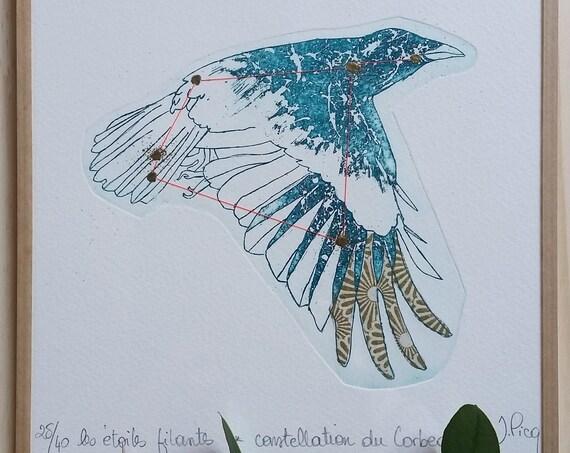 Raven Constellation - Framed