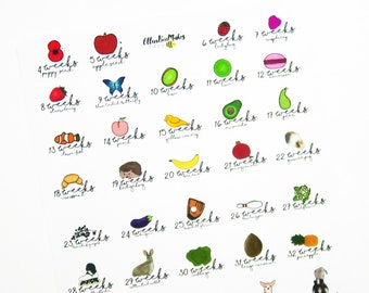 Weekly Size Pregnancy Planner Stickers for planners, journaling, scrapbooking