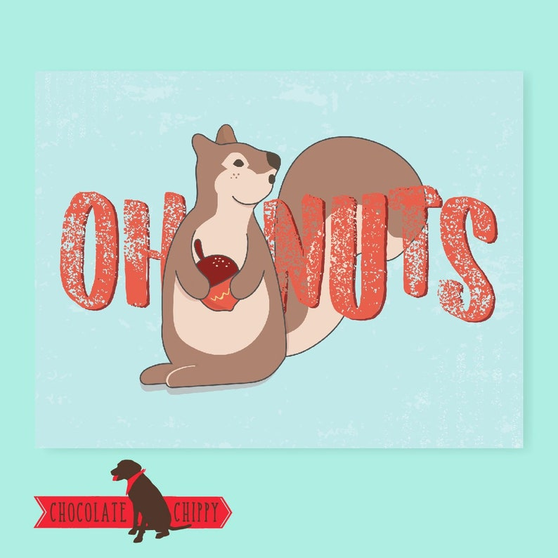 Oh Nuts  Squirrel Card  Greeting Card  Funny Card  Funny image 0