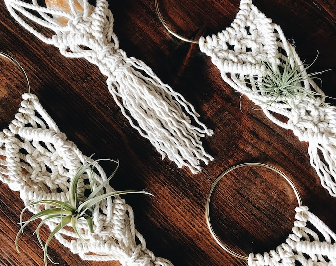 Small Macrame Air Plant Hanger