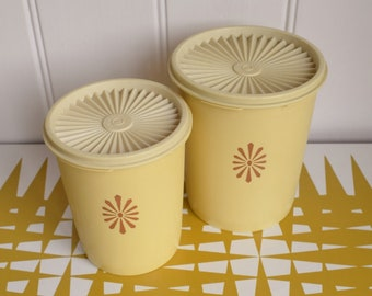 Splendid Vintage set of two fan lidded Tupperware containers. Retro kitchen storage