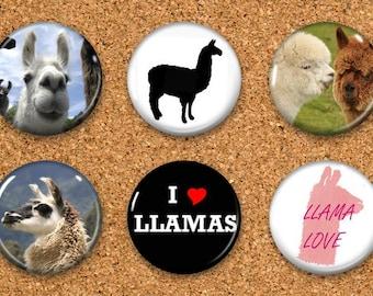 """Llama Thumbtacks, Llama Push Pins, Llama Magnets, 6 thumbtacks for corkboard, 6 Magnets for Magnetic Whiteboards or fridge 1"""" size"""