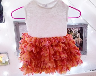 Baby Floral Ruffle Skirt Dress.