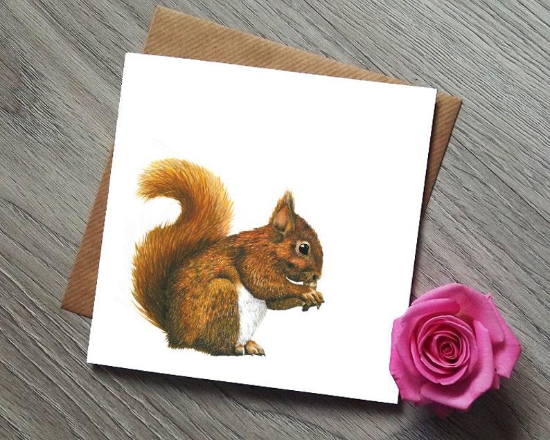 Roux Cartes D'écureuil Cadeaux Cadeau Carte Art Les Écureuil Amateurs D2HIeYE9Wb
