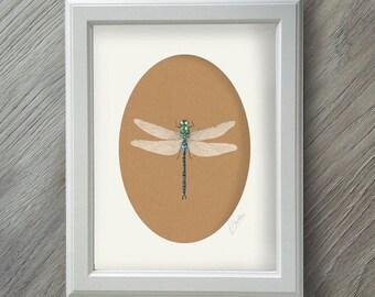 Gärtner Geschenk - Dragonfly Geschenke - Libelle Kunst - Libelle Wandkunst - Kunstdruck - Dragonfly - Geschenke für Gärtner - Aquarell Druck
