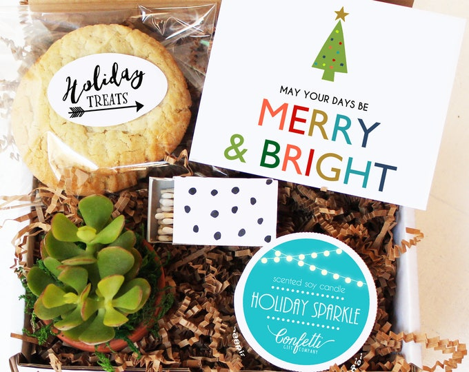 May Your Days Be Merry And Bright Gift Box | Christmas Gift | Corporate Holiday Gift | Succulent Gift Box | Unique Holiday Gift
