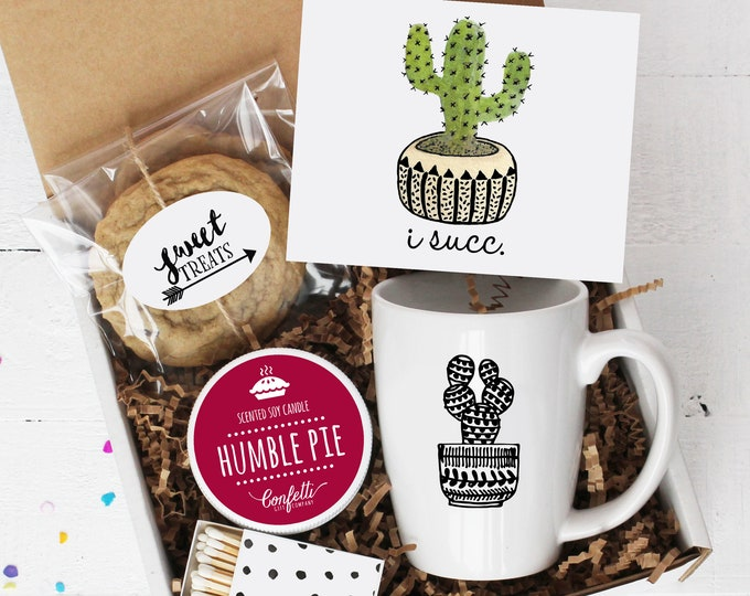 I Succ Gift Box - Comfort Box | Apology Gift | Thinking of You | I'm Sorry Gift | Friend Gift | I Suck | Succulent Gift Box | Pamper Gift