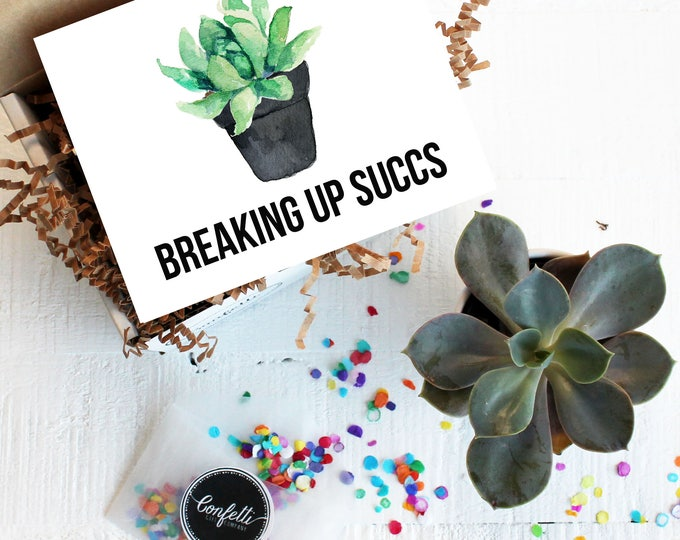 Mini Breaking Up Succs Gift Box -  Break Up Gift | Succulent Gift| Best Friend Gift | Divorce Gift | Break Up Kit