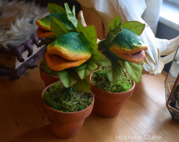 Audrey II Small Plant Replica from Little Shop of Horrors