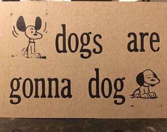 Advice on dogs