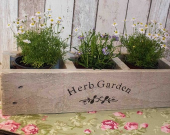 Wooden herb planter   Etsy on wooden seed planter, wooden herb boxes, pallet wood planter, wooden herb garden, wooden potato planter, wooden plant stands, wooden corn planter, wooden pot planter, wooden herb sign, wooden herb bed, wooden cedar planter, wooden garden planter, wooden flower planter, wooden pumpkin planter, wooden rectangular planter, wooden wine planter, wooden herb box, wooden tomato planter, wooden strawberry planter, wooden herb table,