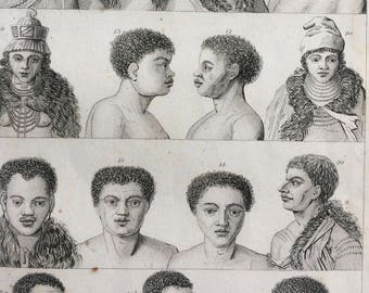 1852 Original Antique Human Races Engraving - Anthropology - Mankind - Ethnology