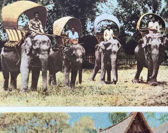 1940s Land and Water Travel in Siam Original Vintage Photo Print - Elephant - Thailand - Siam - Mounted and Matted - Available Framed
