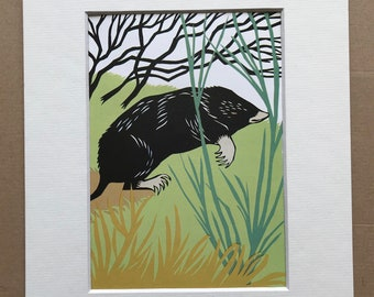 1958 Mole Original Vintage Illustration - Mounted and Matted - Paper Cut Illustration - Wildlife - Colourful Wall Art - Available Framed