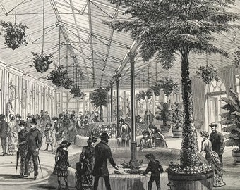 1883 The New Reptile House at the Zoological Gardens Original Antique Print - Mounted and Matted - Available Framed - London