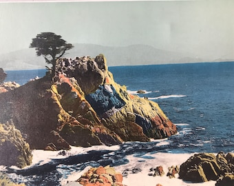 1943 Cypress Point, Monterey Original Vintage Photo Print - California - Available Framed