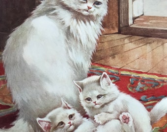 1926 Persian Cat Family Original Antique Print - Mounted and Matted - Available Framed